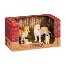Terra - Golden Retriever Family