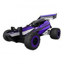 RC Mini Power Buggy